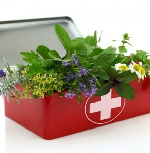 Iranian traditional medicine can play a leading role in military medicine worldwide