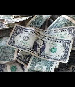 Imports of 8 new goods to receive foreign currency at official rate