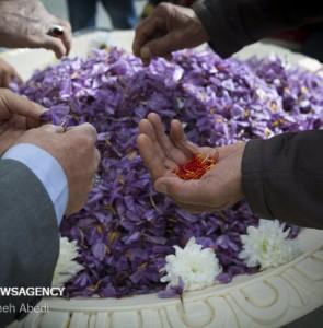 Mehr News Agency - Saffron festival in Khomein