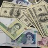 Iran's foreign currency reserves to exceed $65b by end of 2020: Economist