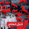 "Siri Hustvedt's ""Blazing World"" published in Persian"