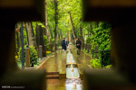 Mehr News Agency - A rainy spring day in 'Iranian Garden'